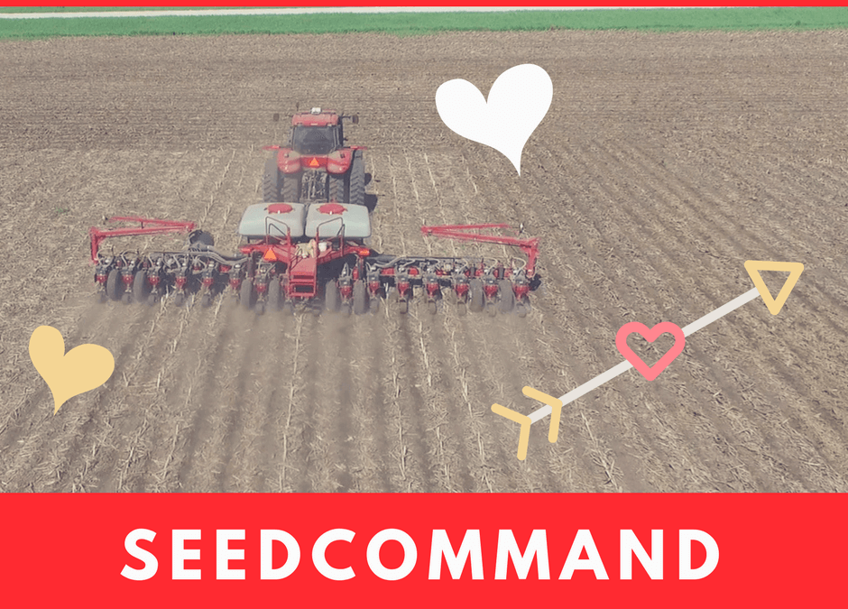 5 Reasons SeedCommand is Your Perfect Valentine