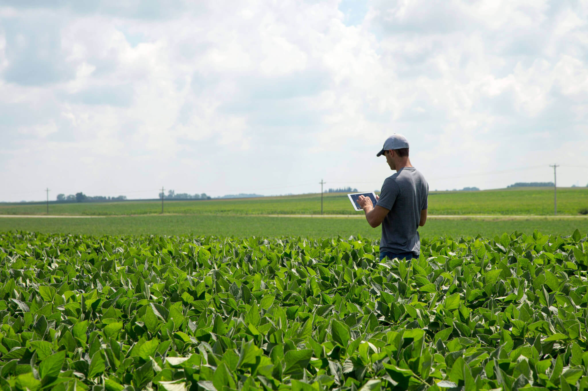 Ag Leader Expands Full-Farm Data Solution by Connecting Operations Running Mixed Fleets