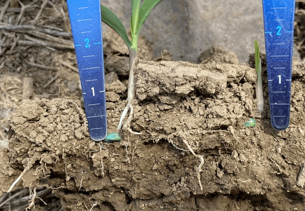 SureForce™ VS. Springs in No-Till and Conventional Till